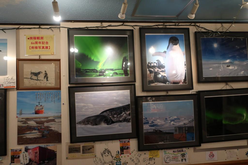 ドライカレー 日本郵船 飛鳥 南極料理人 MIRAI 関内カレー